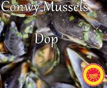 Conwy Mussels Dop